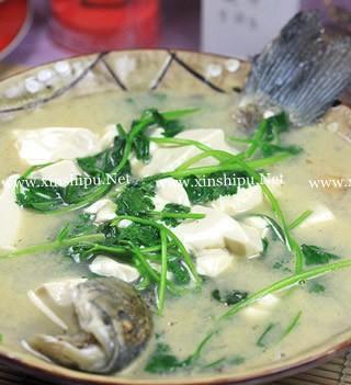 鲫鱼香菜豆腐汤的做法