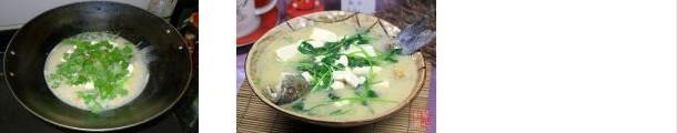 鲫鱼香菜豆腐汤的做法图