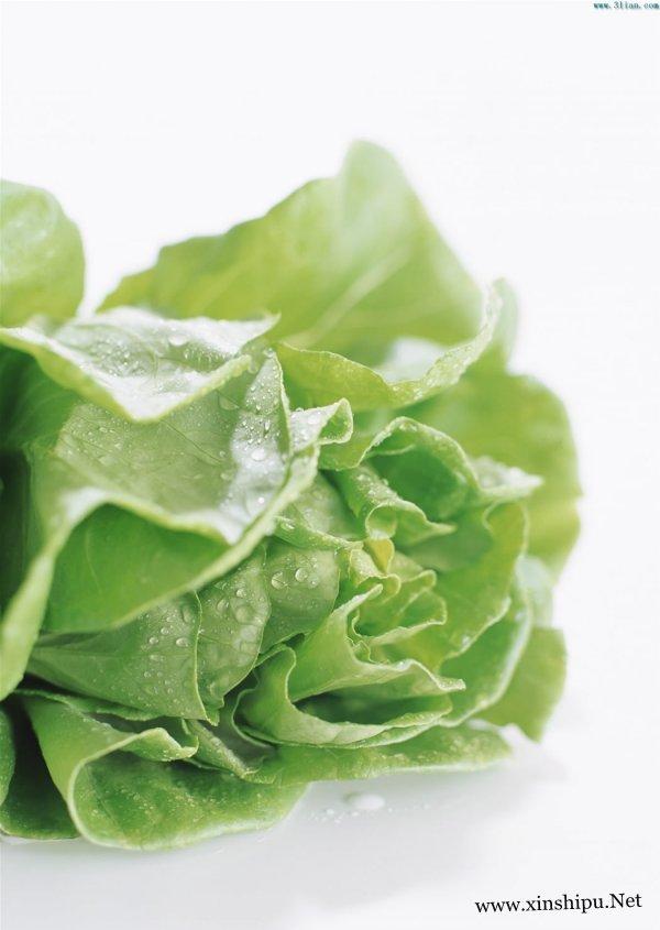 白菜怎么做好吃 白菜的做法 4个白菜最养生的吃法